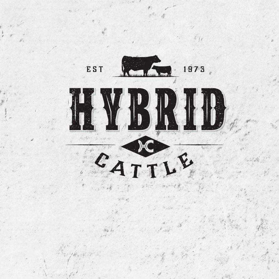 Hybrid Cattle