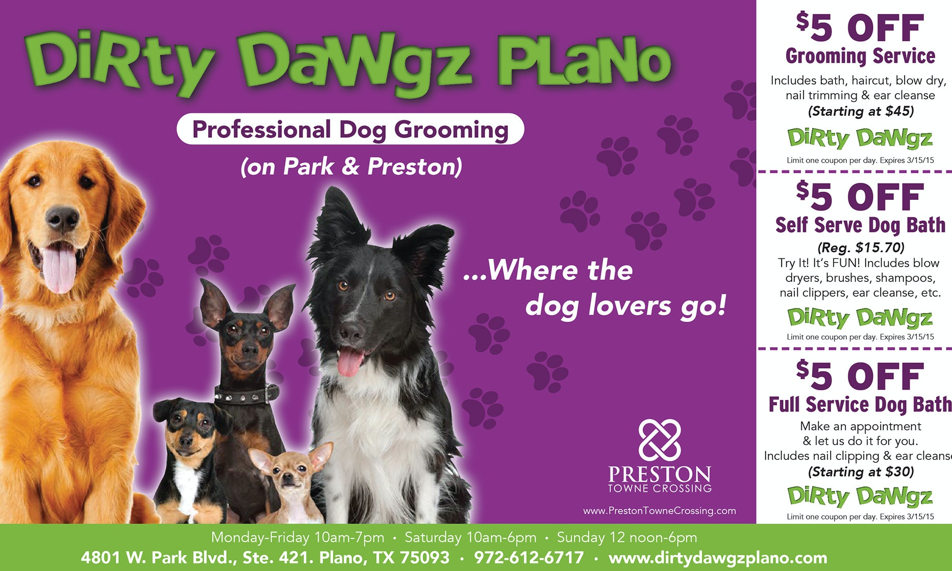 Flyer for professional dog grooming company
