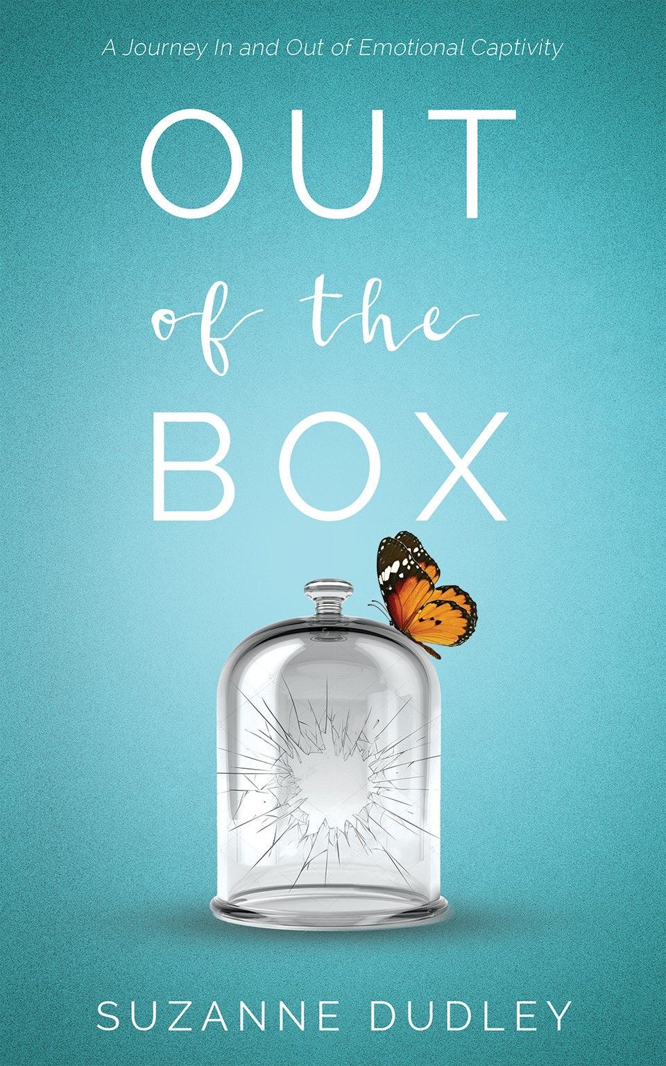 Wonderful Out Of The Box Book Cover