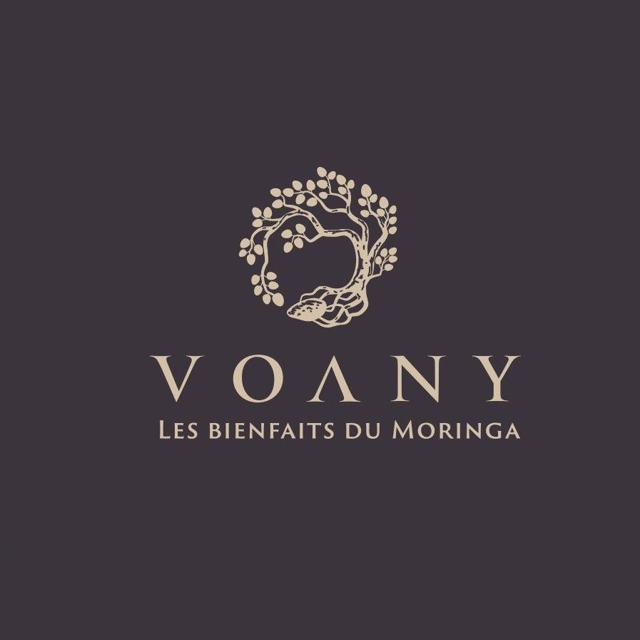 Diseño de logotipo clásico para Voany