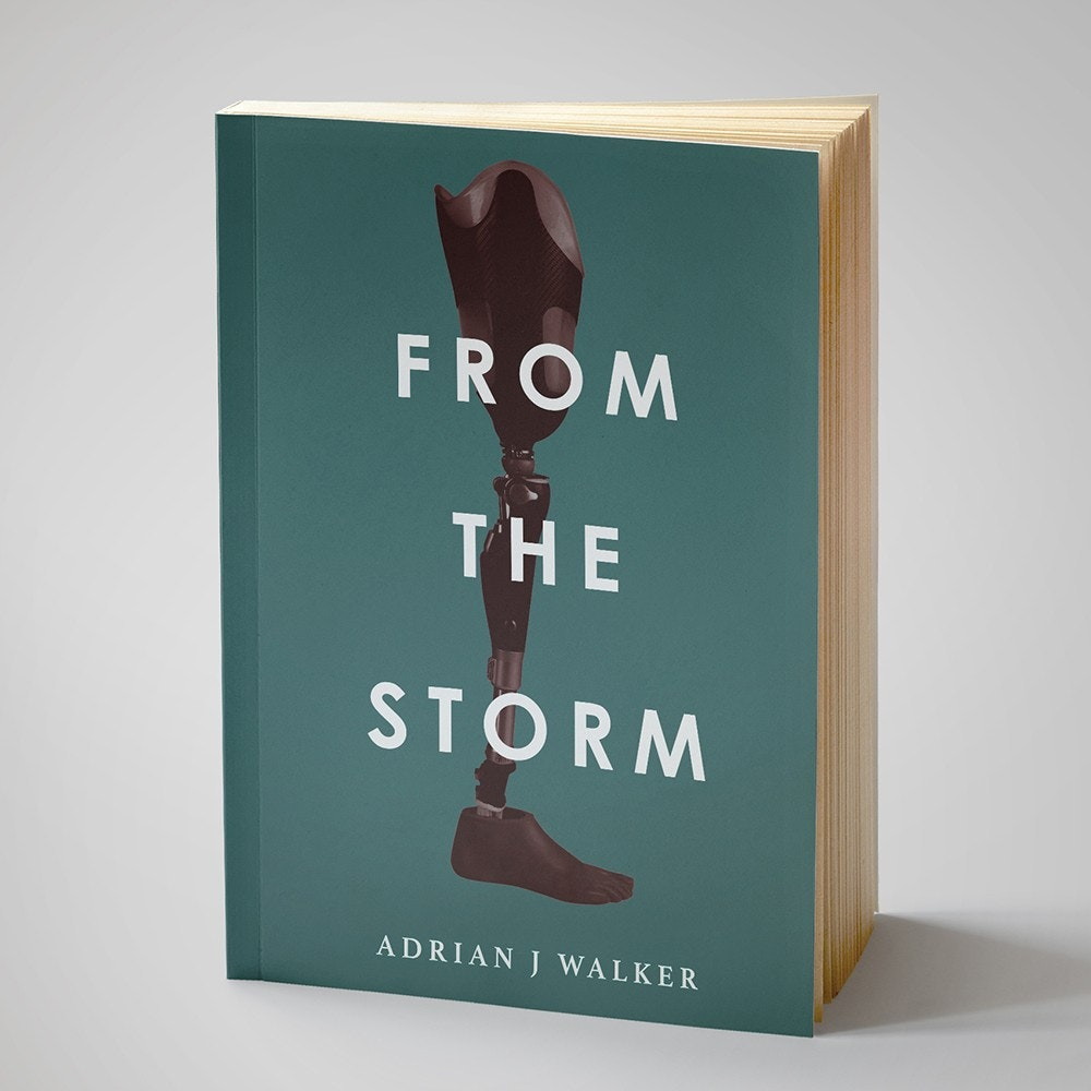 From the Storm book cover
