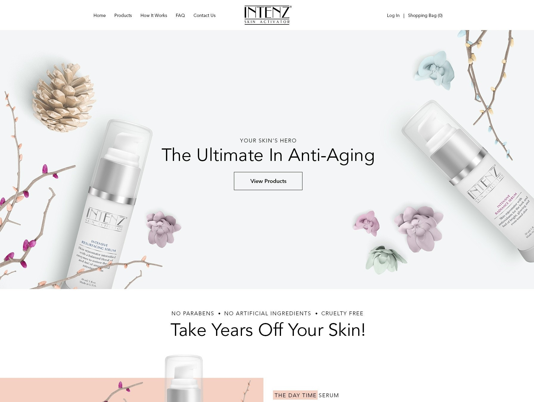 Intenz web page design
