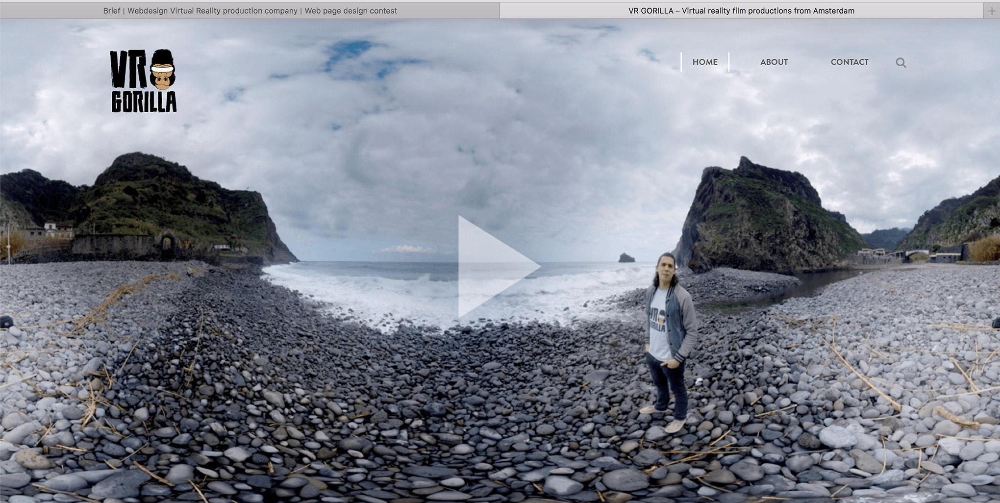 VR Gorilla web design