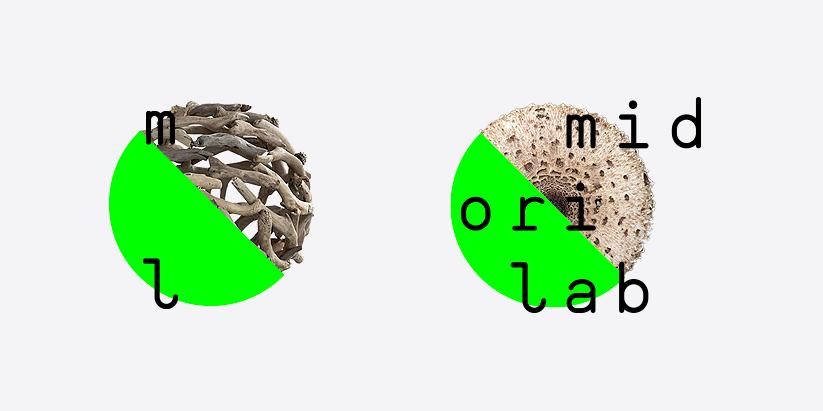 Vibrant green Branding