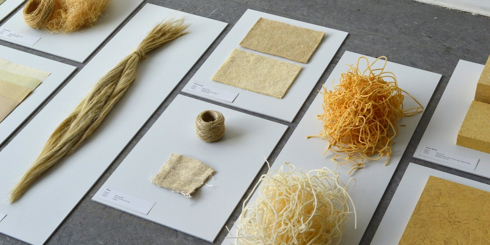 biodegradable plant-based packaging materials