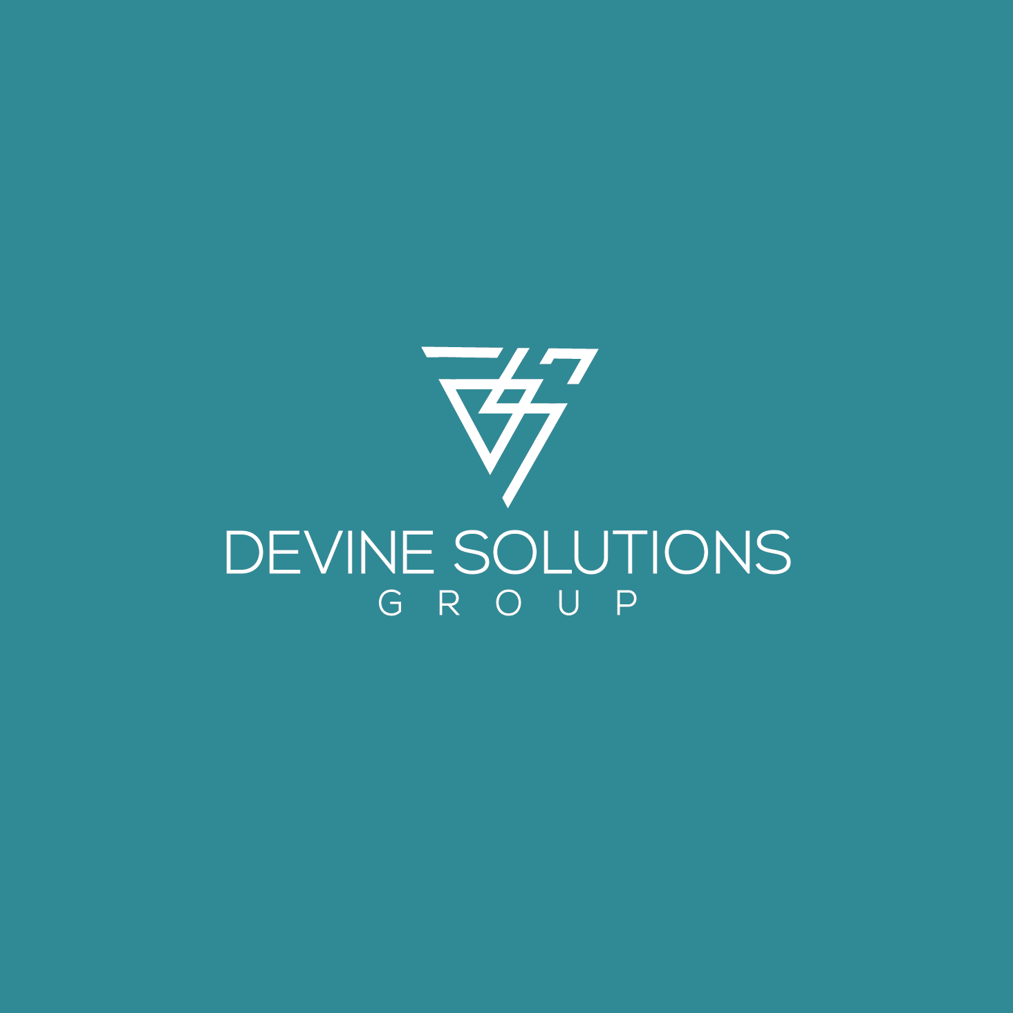 Devine Solutions Group logo